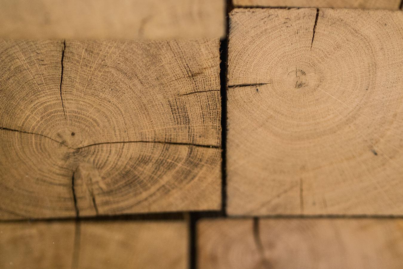 Neues Holz, eine Produktion auf Hochtouren und das Magazin köstlich vegetarisch