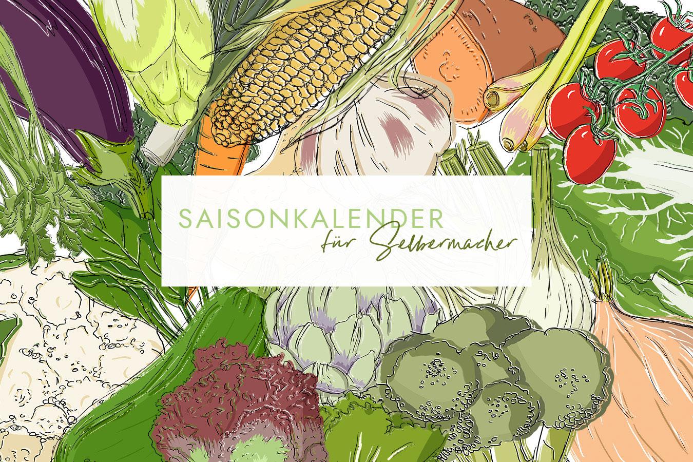 Saisonkalender für Gemüse