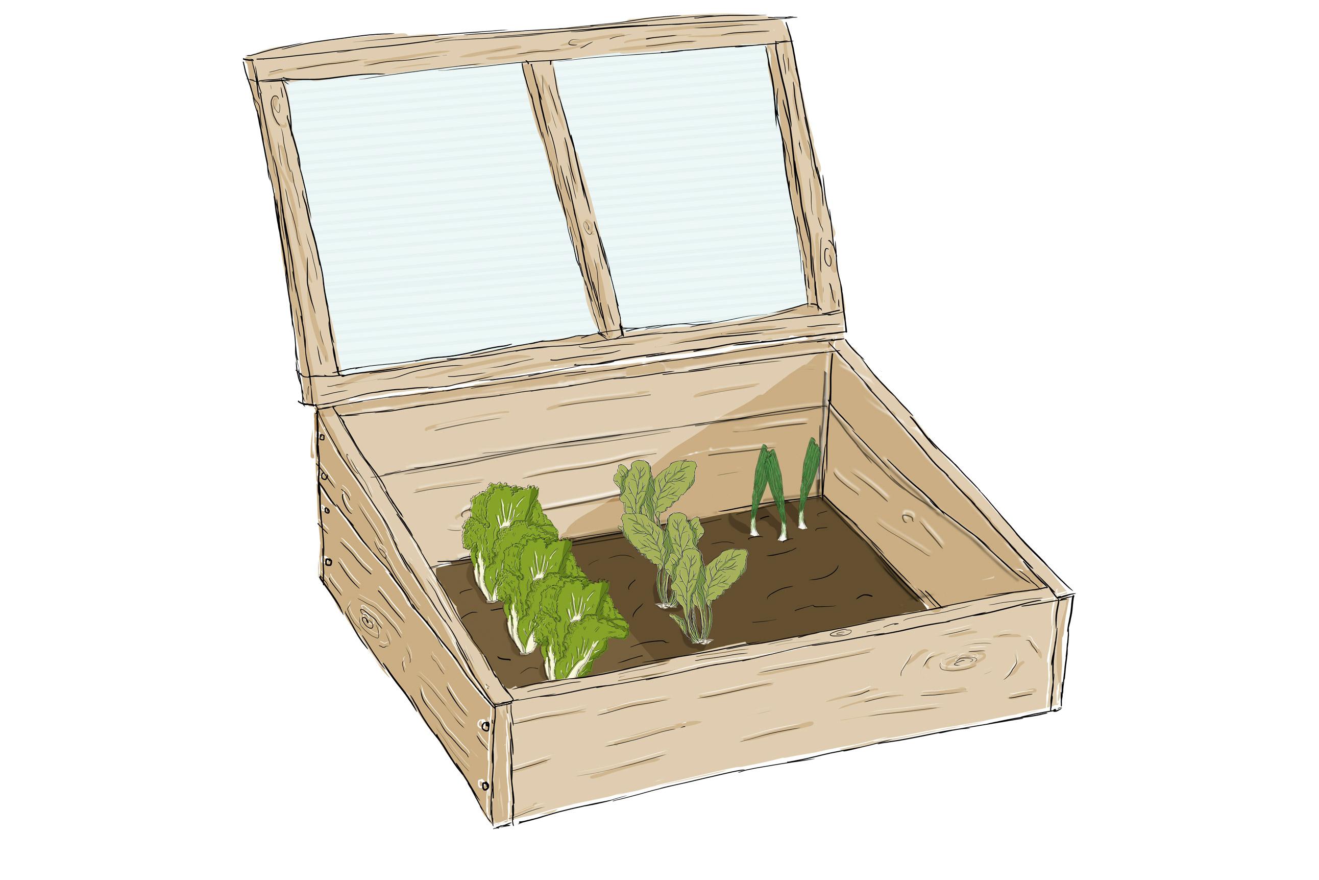 Dein DIY Frühbeet: Starte perfekt in die Gartensaison
