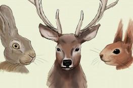 Malen mit klotzaufklotz: Waldtiere