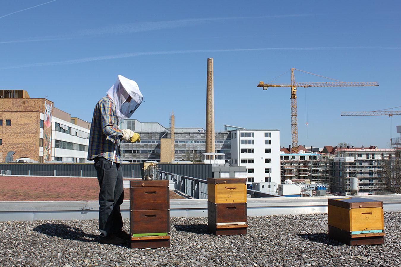 Makers: nearBees - nachhaltigen und regionalen Honig online kaufen